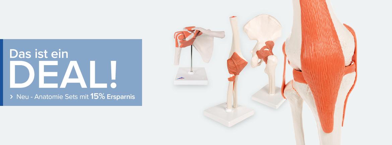 Medizinische Simulatoren, Anatomische Modelle und Lehrtafeln ...