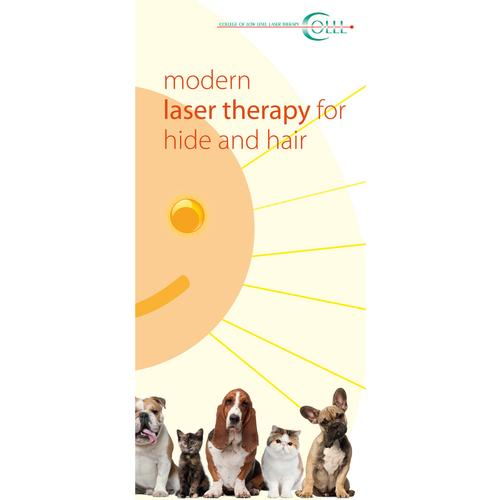 Flyer Laser Therapy and Laser Acupuncture Vet Small animals, EN, 1018607, Akupunktur Bücher