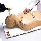W30508: Endotracheal Intubation Simulator