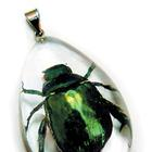 W59648: Dew Drop Pendant - Chafer Beetle